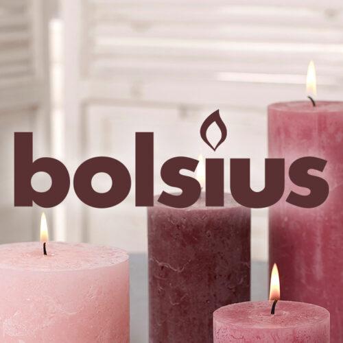 case_bolsius_2